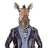 Nažehlovací nálepka, zebra - 21 x 30 cm
