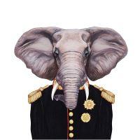 Nažehlovací nálepka, slon - 21 x 30 cm