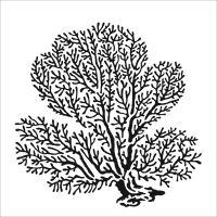 """Šablona 6""""x6"""" (15,2 x 15,2 cm), Coral Spray"""
