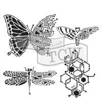 "Šablona 6""x6"" (15,2 x 15,2 cm), Nature's Circuitry"