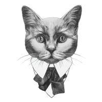 Nažehlovací nálepka, kočka - 21 x 30 cm