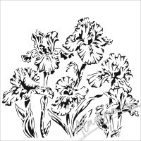 "Šablona 6""x6"" (15,2 x 15,2 cm), Irises"