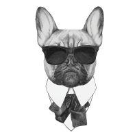 Nažehlovací nálepka, pes s brýlemi - 21 x 30 cm