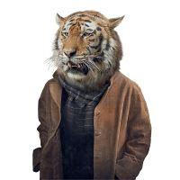 Nažehlovací nálepka, tygr - 21 x 30 cm