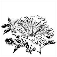 Šablona TCW - Hibiscus